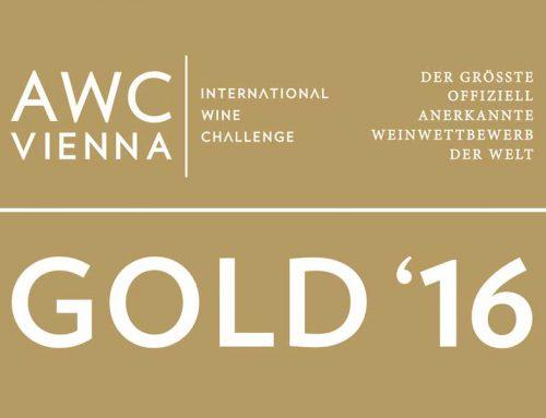 GOLD bei der AWC Vienna
